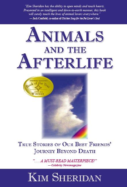 rainbow light s one side effects 17 best images about rainbow bridge in memory of mittens