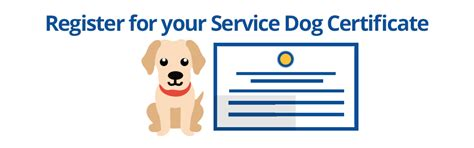 learn how to service dogs how to certify a service service certifications