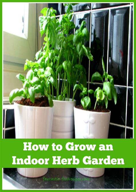 how to grow an indoor herb garden 2 fantastic food recipes - How To Grow An Indoor Herb Garden