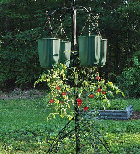 Hanging Vegetable Planters hanging tomato planters a look at hanging vegetable planters