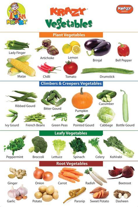 vegetables chart products krazy vegetables chart manufacturer