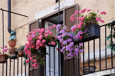 11 Small Apartment Balcony Ideas With Pictures Balcony Flowers For Balcony Garden