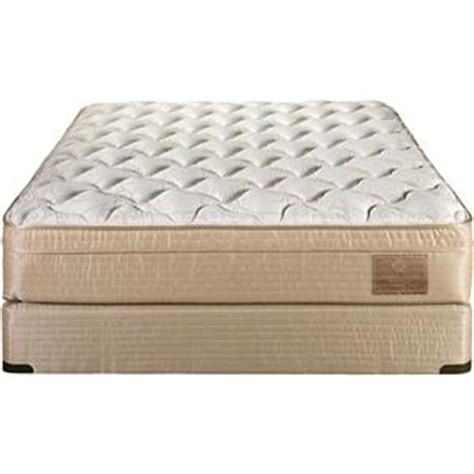 Darvin Mattress Sale by Comfortcare Comfortcare 3000 Orthopedic By Restonic