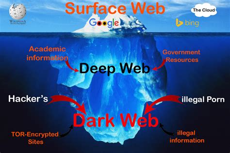 The Web the web surface web web web facts and
