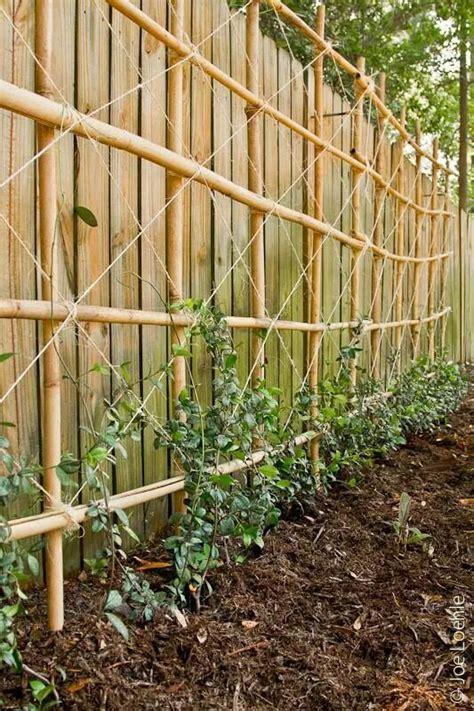 Bamboo Trellis Diy Bamboo Trellis From The Garden