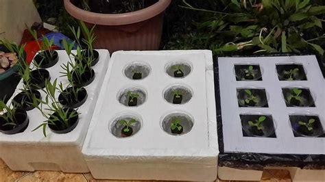 Pupuk Ab Mix Untuk Aquascape pupuk untuk tanaman hidroponik