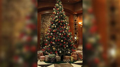 safety tips to prevent christmas tree fires this holiday