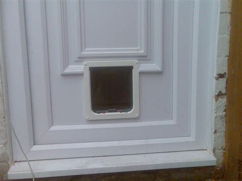 Putting Cat Flap In Glass Door Cat Flap Fitter Bath Midsomer Norton Trowbridge Castle