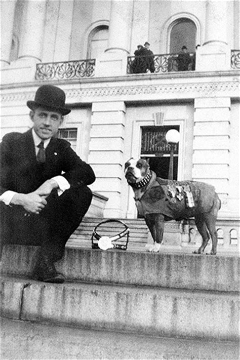 Sergeant Stubby Pictures Dogs Of War Sergeant Stubby The U S Army S Original And Still Most Highly Decorated Canine
