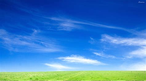 blue sky morning books blue sky and green grass morning wallpaper