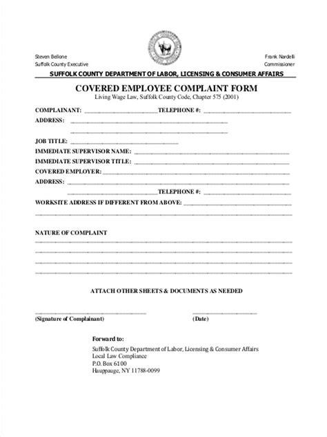 employee complaint form 11 employee complaint form sles free sle exle