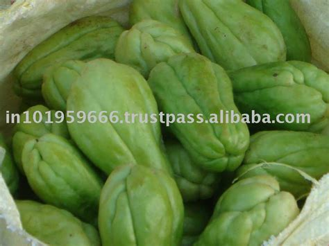 tayota in english chayote suppliers exporters on 21food com