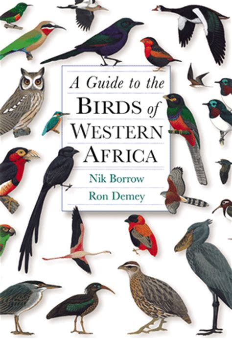 the birds books demey r and borrow n a guide to the birds of western