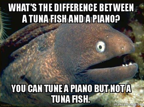 Tuna Meme - pics for gt tuna fish meme
