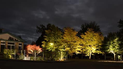Landscape Lighting Fixtures Uplighting Outdoor Lighting Types Techniques Buffalo Ny Wny
