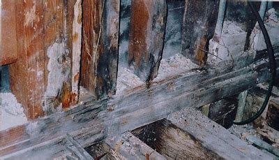 buying a house with dry rot wood rot