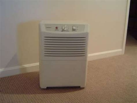 25 best ideas about basement dehumidifier on