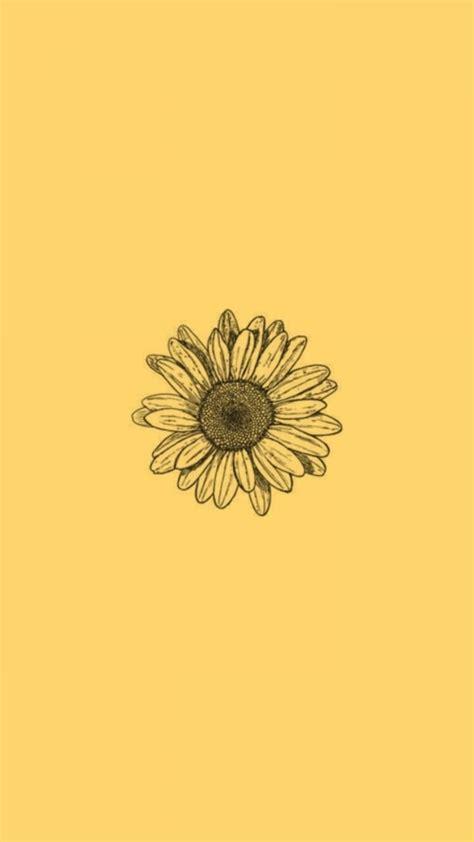yellow aesthetic sunflowers hd wallpapers desktop