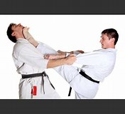 Image result for Top 10 Toughest Fighting Styles