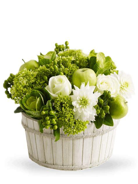 fiori verdi matrimonio verde per composizioni floreali bt34 pineglen