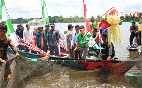 Keranjang Panen Ikan panen perdana desa bunut hilir hasilkan 2 ton ikan thetanjungpuratimes