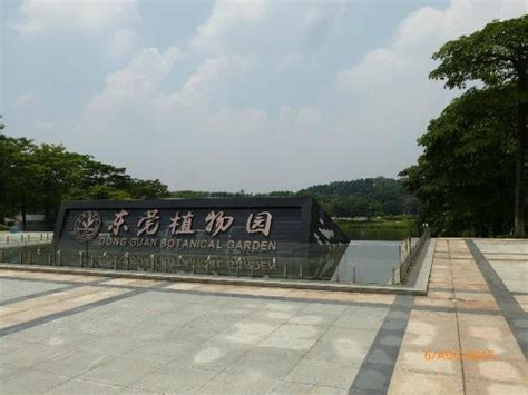 Things To Do Near Square Garden by The Top 10 Things To Do Near Dongguan Central Square