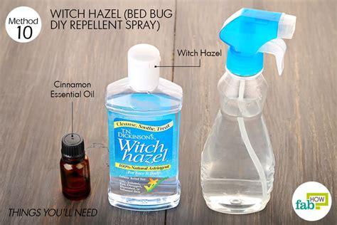 treat bed bug bites top  home remedies bewellhub