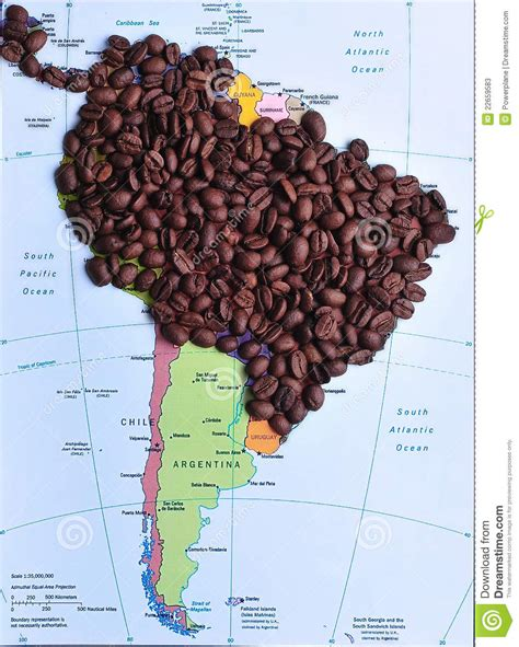 Coffee Producers In South America Stock Image   Image: 22659583