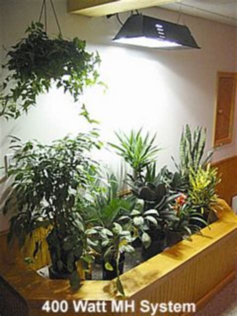 artificial sunlight l for plants selecting grow lights for indoor living wall applications