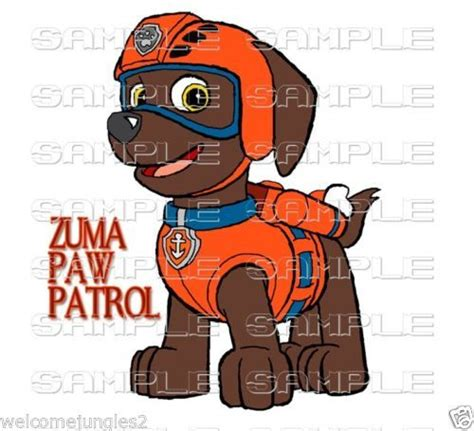 105 Best Images About Paw Patrol Party On Pinterest Paw Patrol Captain America Iron
