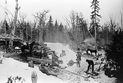 scfc history of forest industry history