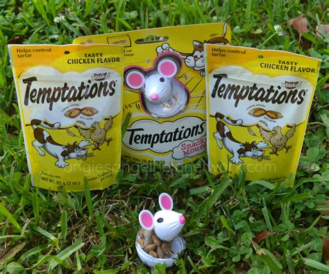 Christmas Giveaways For Low Income Families - check out temptations new snacky mouse toy
