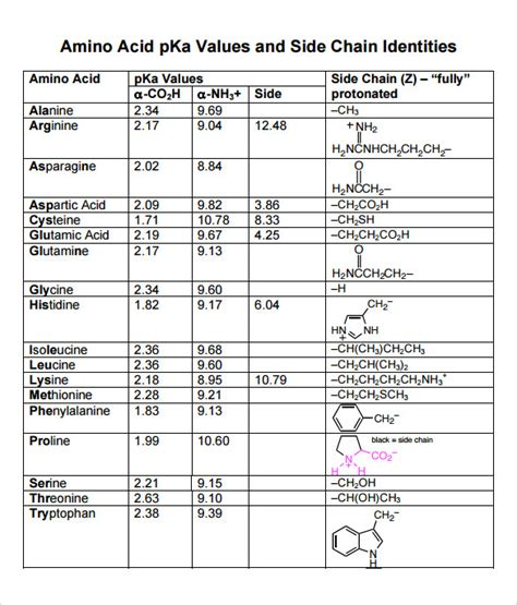 amino acid template cards 16 amino acid chart templates sle templates