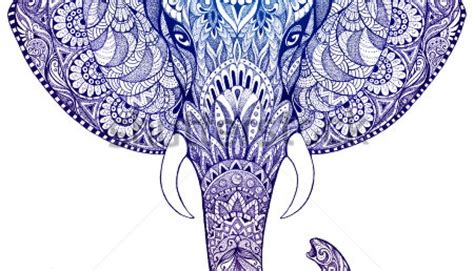 beautiful hand painted elephant with ornament mandala