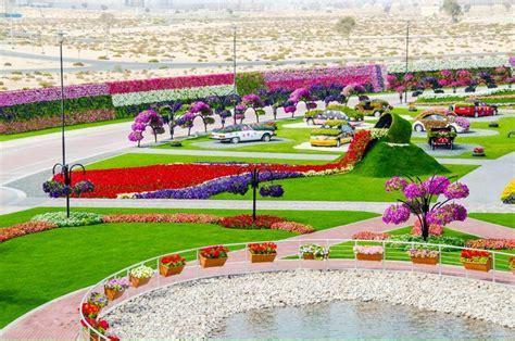 dubai miracle garden world flower garden