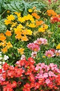 un jardin fleuri toute l 233 e le mag de flora