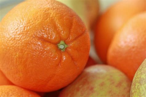 Benihbibitbiji Buah Jeruk Lemon Cui jeruk dan lemon cegah penyakit akibat obesitas republika