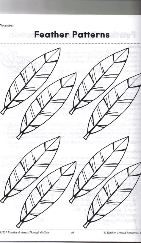 turkey feather template printable feathers is coloring pages