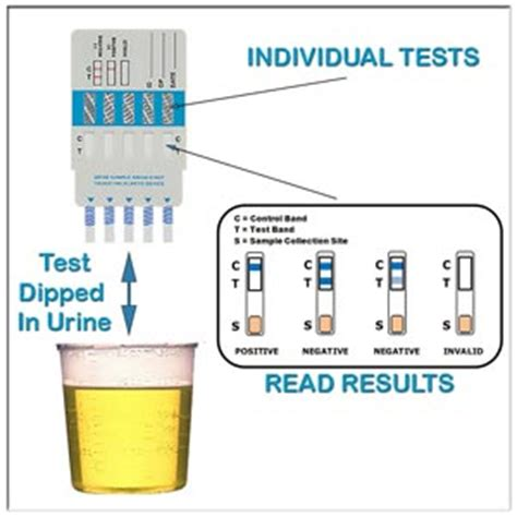 Does Urine Smell Different When Detoxing Heroin by How To Pass A Urine Test