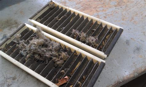 animal nest in cabin air filter rx8club