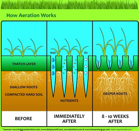 benefits of core aeration for lawns