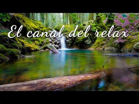 imagenes relajantes de la naturaleza sonidos relajantes de la naturaleza agua y pajarillos 2