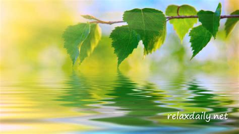 peaceful background calm peaceful background relaxdaily
