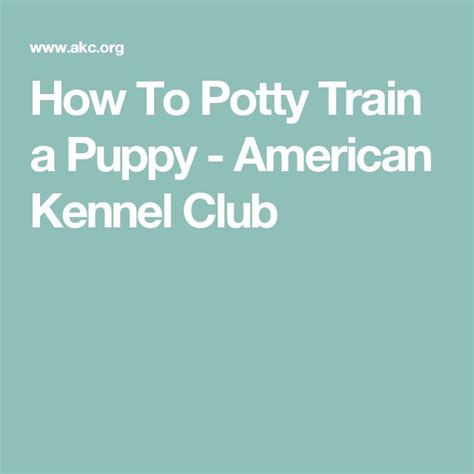 how to kennel your puppy 7 best images about puppy tips and recipes on