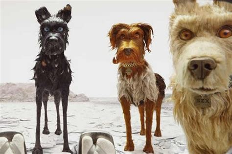 isle of dogs isle of dogs trailer wes s new accused of whitewashing radio times