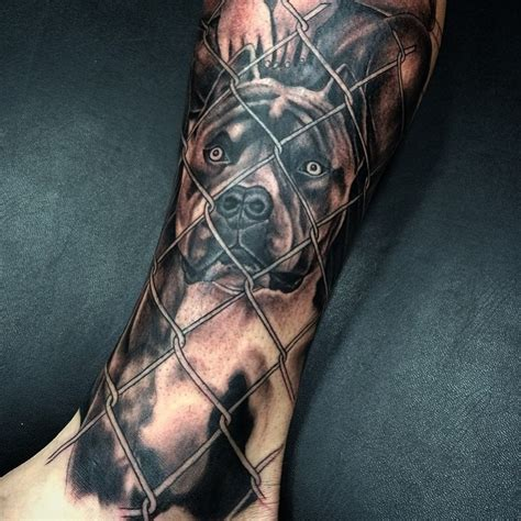 pitbull tattoo 70 pitbull designs meanings for the