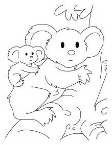 koala coloring pages koala coloring pages az coloring pages