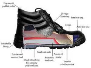 diagram of shoe diagram wiring diagram free