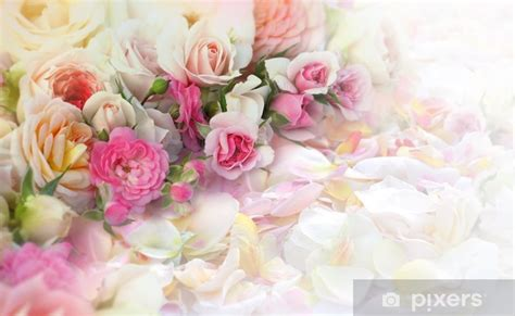 can you laminate flower petals roses flowers and petals background wall mural pixers