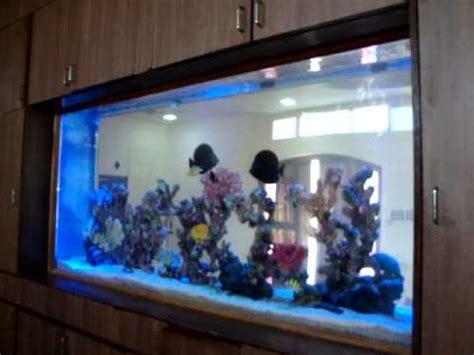 aquarium design chennai aquarium design india chennai marine aquarium designed by